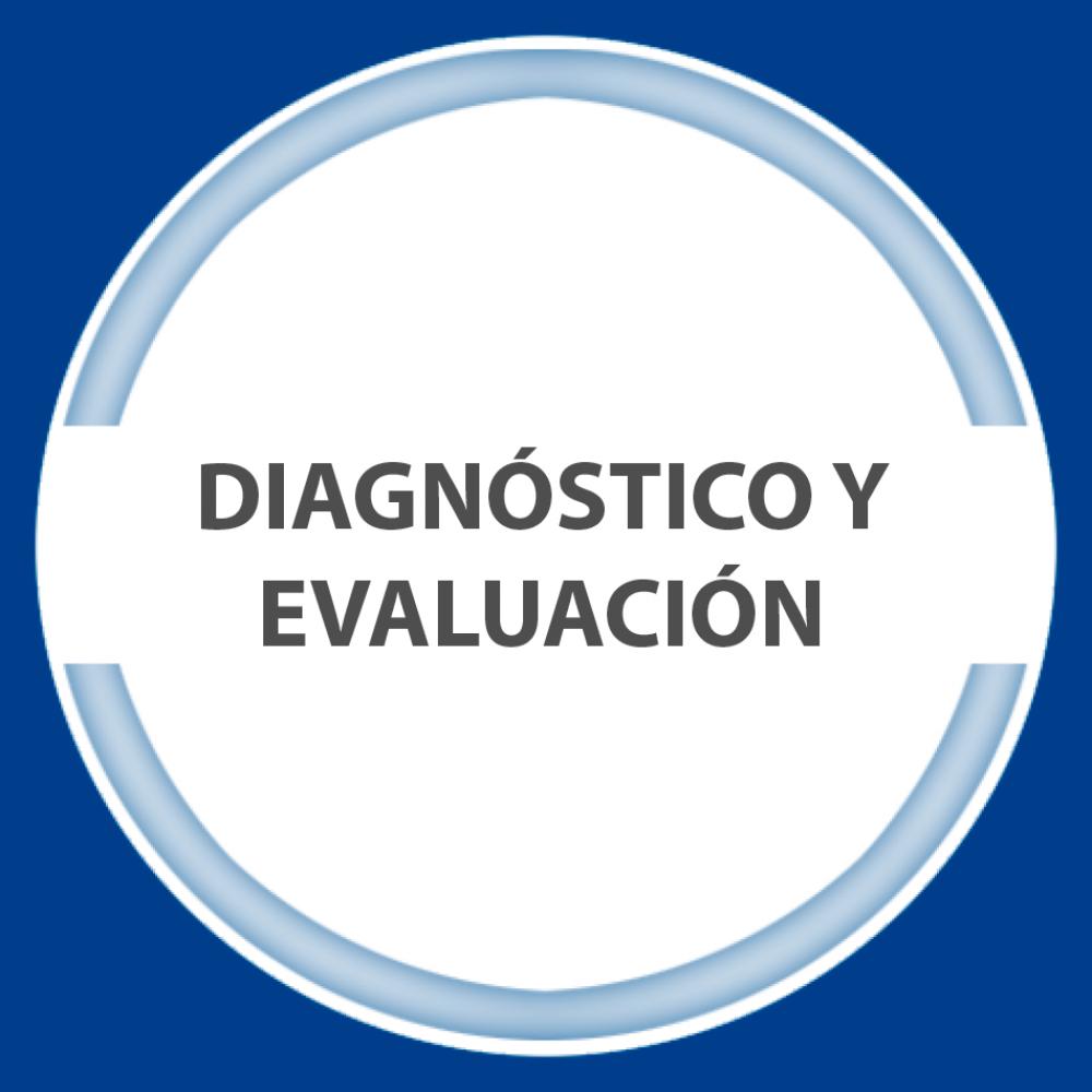 diagnóstico y evaluación
